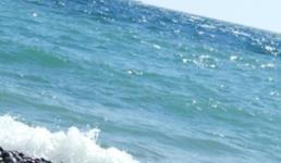 Отдых на Черном море олл инклюзив(фото 4)